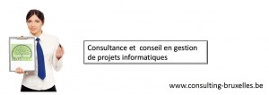 consulting-bruxelles-formation-ms-project-2013